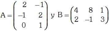 Ejemplo 2 de Matrices