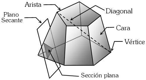 Elementos de Poliedro