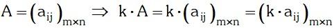 Multiplicacion de un Escalar por una Matriz