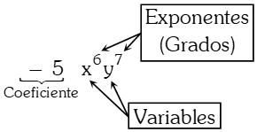 Partes de un Término Algebraico