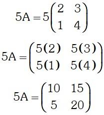 Resolucion Multiplicacion de un Escalar por una Matriz