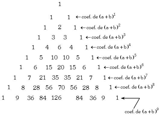 Triángulo Aritmético y el Teorema del Binomio de Newton